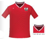 Costa Rica Youth & Adult Soccer Jersey